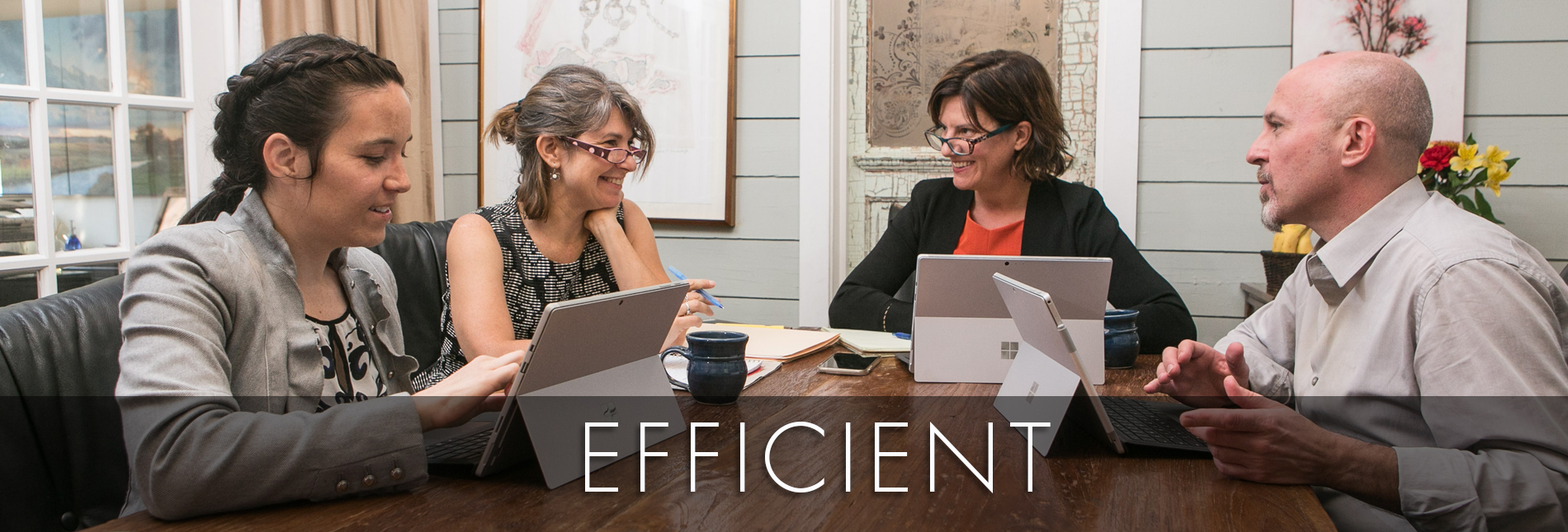 EFFICIENT, Cicala Law Firm PLLC
